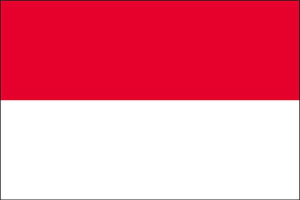 インドネシア 求人