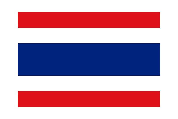 タイ語 タイ人 就職 求人